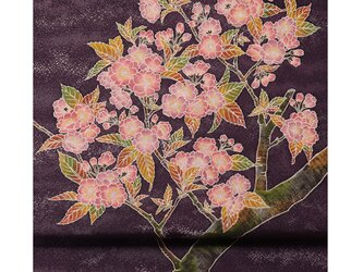 「八重山桜」手描き友禅 染名古屋帯の画像