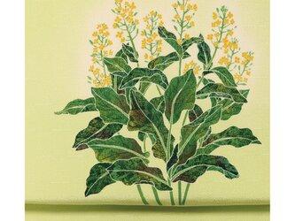 「菜の花」手描き友禅 染名古屋帯の画像