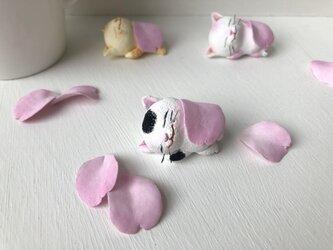 春のお昼寝猫さん白黒の画像