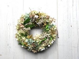 淡い色のプリザーブドフラワーのリース・紫陽花・アイボリー・イエロー・グリーンの画像