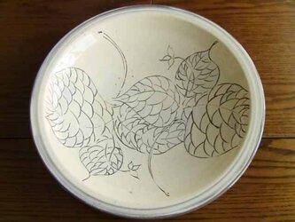 エンレイソウ文大皿の画像