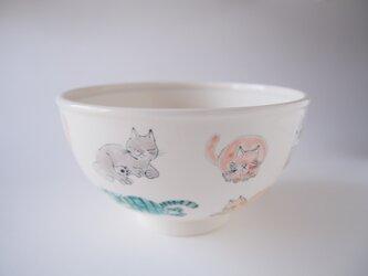 鉢 ネコの画像