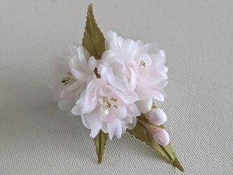 桜の布花コサージュの画像