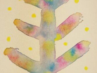 本当の木の画像