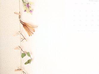 自家栽培のユーカリとヤマユリと綿花のモビールの画像