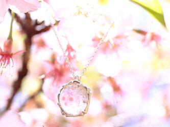 桜玉・桜嵐 首飾りの画像