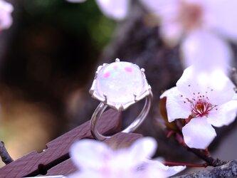 桜玉・桜朧 指飾りの画像
