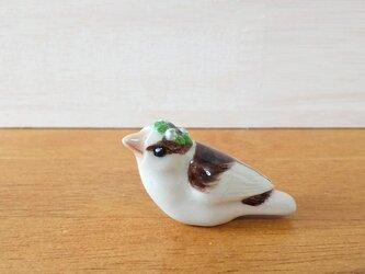 花小鳥/小(陶)ジュウシマツ・花冠の画像