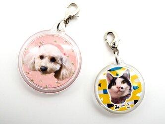 世界にひとつ うちの子 親バカ 迷子札 ネームタグ 写真入り オーダーメイド ドッグタグ 名札 犬 猫 両面別デザインの画像
