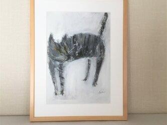 cat2の画像