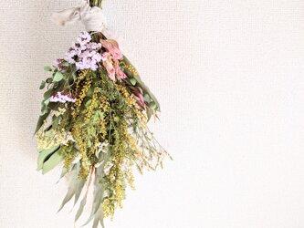 自家栽培ハーブのミモザの蕾と春色スターチスとグレビレアゴールドの春色ドライフラワースワッグの画像
