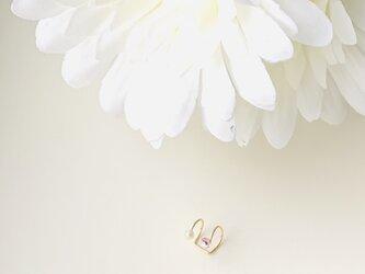 〔14kgf 〕Pearl . . .  Sakura  *  Roseの画像