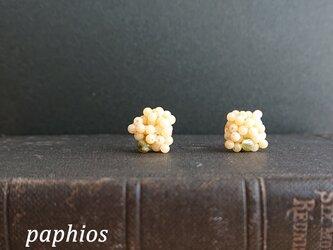[ピアス] petit mimosaの画像