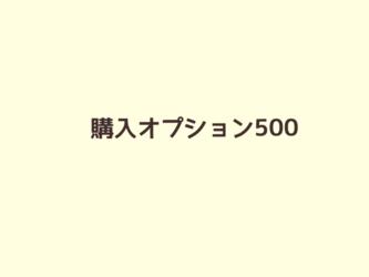 購入オプション500の画像
