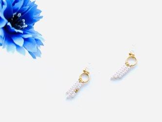 〜 eg 〜  earringの画像