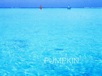 モルディブの渚-5 PH-A4-0170  写真 モルディブ インド洋 南国 オーシャン トロピカル の画像