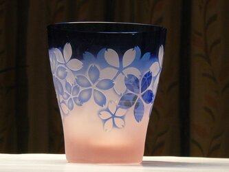 さくら満開フリーグラス 薄ピンク×青 (1個)の画像