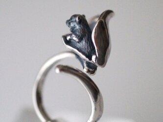 カヤネズミのリングの画像