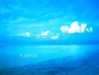 モルディブの渚-06  PH-A4-0171 写真 モルディブ インド洋 南国 オーシャン トロピカル の画像