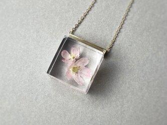 桜のネックレス2021  18KGP(ギフト, 誕生日プレゼント, ギフトラッピング, 結婚式, お呼ばれ)の画像