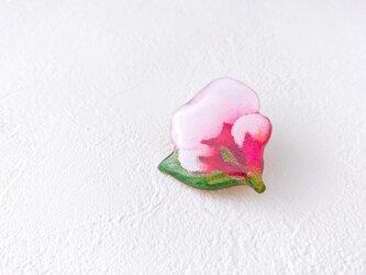 桜のブローチ(ボックス入)の画像