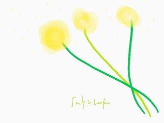 黄色のお花 イラスト ポストカード2枚セット  ほんわか 癒し ナチュラル アート sakurako の画像