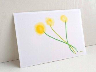 黄色のお花 イラスト ポストカード2枚セット  ほんわか 癒し ナチュラル アート naturako の画像