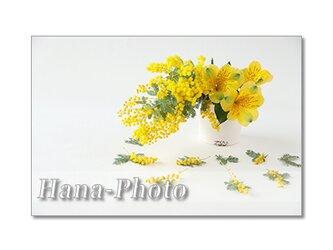 1378)  可愛いアレンジミモザ    ポストカード5枚組の画像