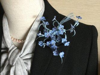 ブルーのワスレナの画像