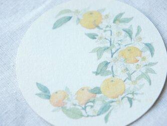 蜜柑月のカードの画像