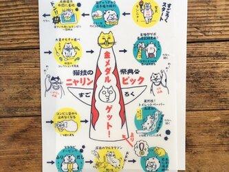 猫技の祭典!「ニャリンピック」クリアファイルの画像
