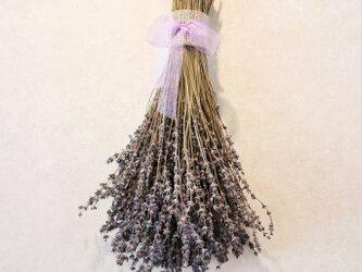 ラベンダースワッグ 大(北海道産)香りの品種・おかむらさき~農薬をつかわずに育ったドライフラワー~の画像