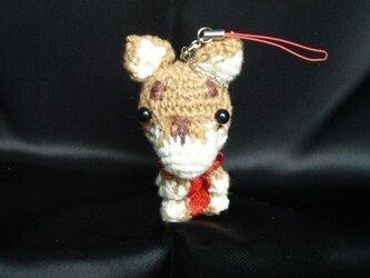 柴犬♡手作りわんちゃんストラップ♡人気のかわいい編みぐるみ人形の画像
