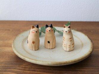 うとうと猫 ( ブチ・はちわれ・トラ )の画像