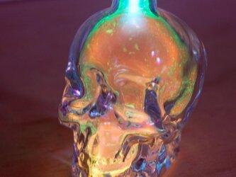 Skull [オレンジ/グリーン]の画像