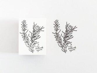 ラバースタンプ ローズマリーの画像