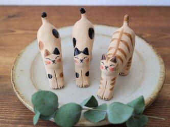 のび猫 ( ブチ・はちわれ・トラ )の画像