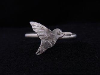 鳥リング no.2(ハチドリ)の画像