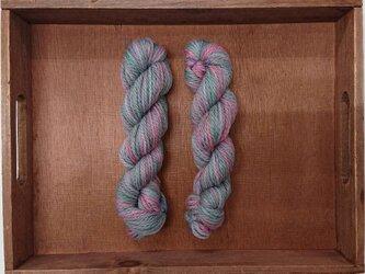 インダスからの贈り物【オリジナル段染め毛糸】㉘ 1本の画像