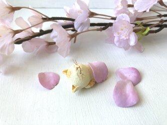 春のお昼寝猫さん クリーム茶トラの画像