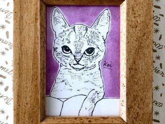 イラスト原画【読書する猫】の画像