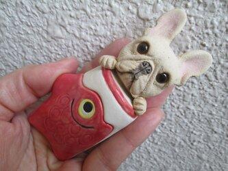 鯉のぼり★フレンチブルドッグ②の画像