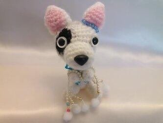 お願いわんちゃん♡ブルテリアの人形♡手作り犬の編みぐるみM人気の画像