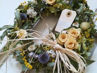 黄バラとミモザのgarden wreathの画像