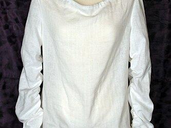 スプークカットソー(ブラキウム)の画像