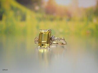 小枝のリング シャルトルーズイエロー (Rameau Ring)の画像