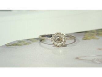 Gerbera Silver Ringの画像