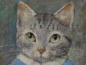 サバ・ブルー4の画像