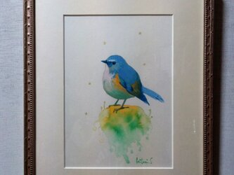 苔と小鳥の画像
