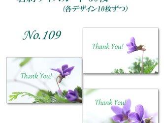 No.109 可憐なスミレたち    名刺サイズサンキューカード   30枚の画像